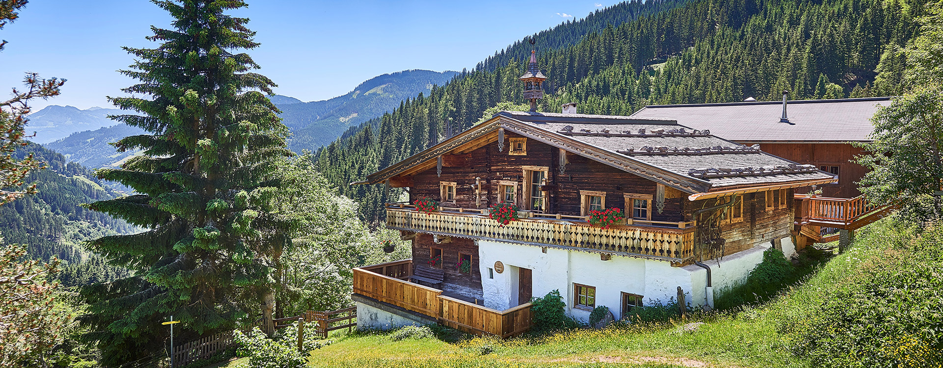Highking Chalet Grünegg