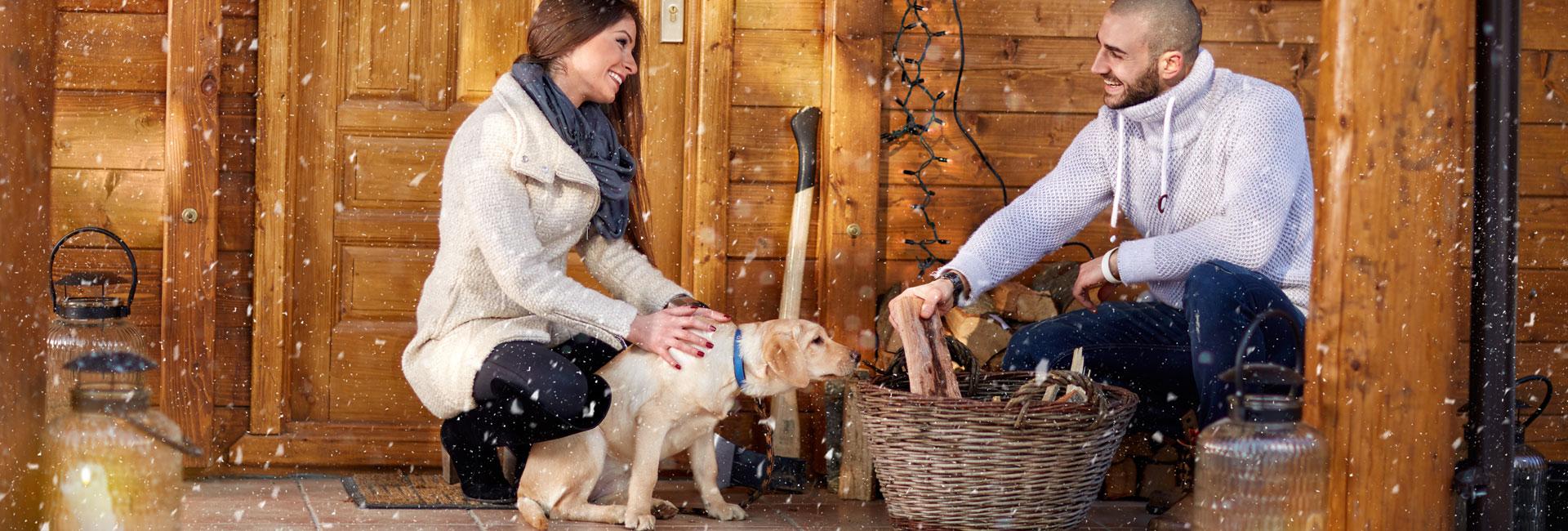 hundefreundliche-chalets